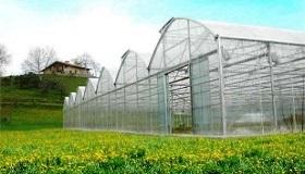 La ferme du producteur de spiruline