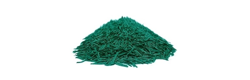 Spirulina in twigs